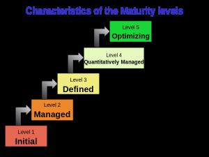 مدل بلوغ فرایندی